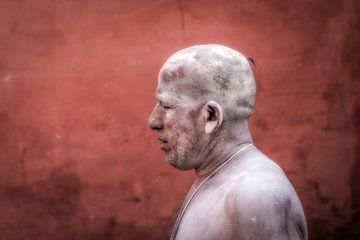 Naga Sadhu tijdens Kumbh Mela in Haridwar, India van Wout Kok