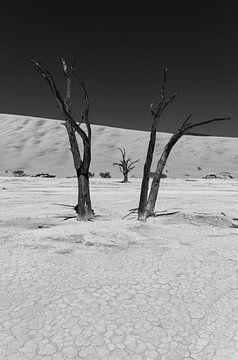 Sossusvlei Namibië (6) Zwart Wit van Adelheid Smitt
