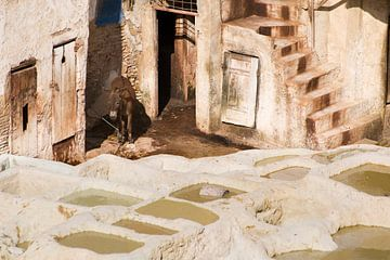 Leerlooierij in Marokko