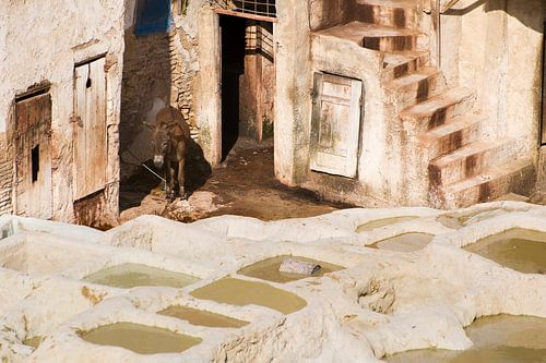 Leerlooierij in Marokko van Gonnie van de Schans