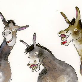 Les ânes sur Martine van Nieuwenhuyzen