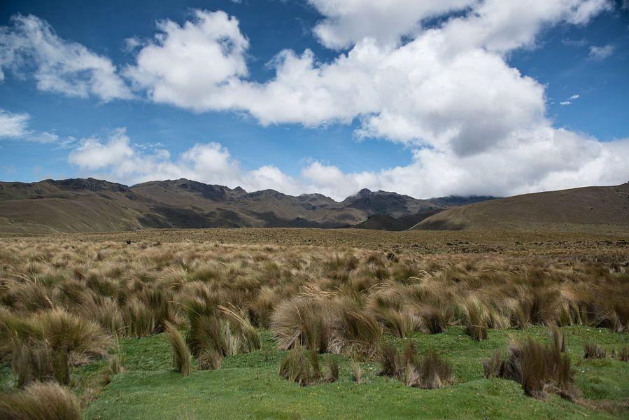 Lakes Of Ozogoche van Kevin Van Haesendonck