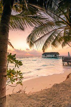 Zicht op de zonsopgang door de palmbomen van Christian Klös