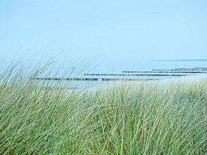 Blick durch die Dünen zur Ostsee