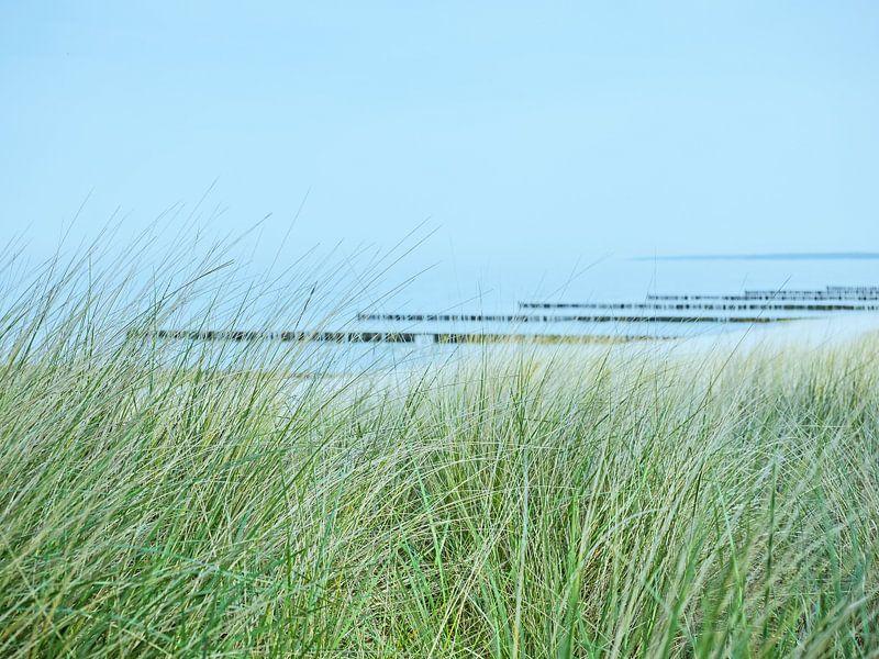 Blick durch die Dünen zur Ostsee von Katrin May