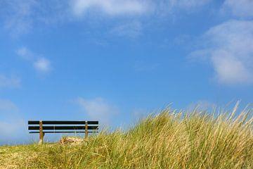 Bankje op het duin, met blauwe lucht van Caroline van der Vecht