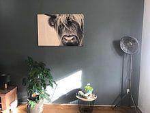 Klantfoto: Portret Schotse Hooglander zwart-wit van Sandra van Kampen, op hout