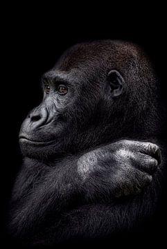 De jonge gorilla man van Ron Meijer