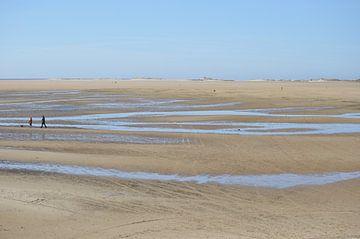 Het Groene Strand van Marian Steenbergen