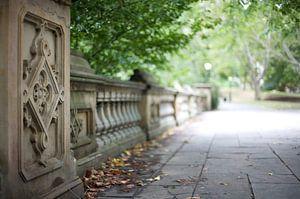 Central Park van