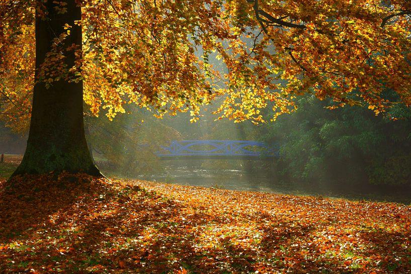 Boom in herfstkleuren en  blauwe brug van Michel van Kooten