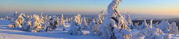 Panorama vom verschneiten Brockengipfel von Karina Baumgart