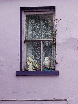 Heitere Fensterbank. von Licht! Fotografie