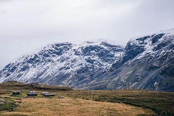 Bergen in Noorwegen van Anneloes van Acht