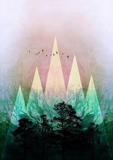 TREES under MAGIC MOUNTAINS IV