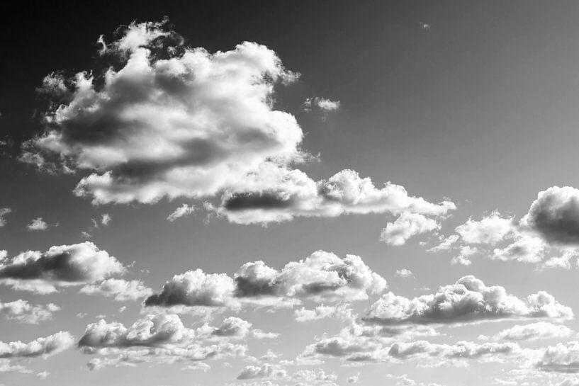 Bewolkte hemel van Frank Herrmann
