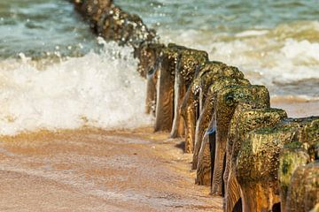 Groynes at the beach of the Baltic Sea van Gunter Kirsch