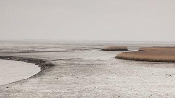 Niedrigwasser auf der New |State Side von Dick Doorduin
