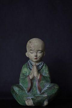 Little Buddha  van Sonja Onstenk