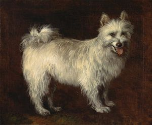 Thomas Gainsborough. Spitz Dog