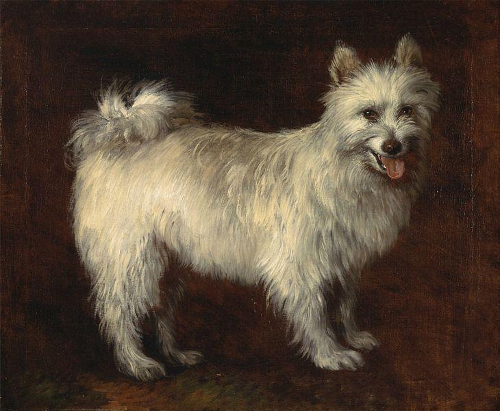 Thomas Gainsborough. Spitz Dog van 1000 Schilderijen