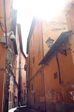 Straße in Pisa von Jessica van den Heuvel