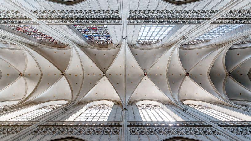 Ceiling of a gothic church von Arjan Almekinders