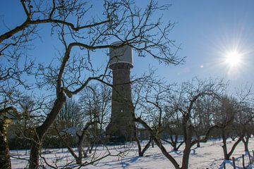 Watertoren Culemborg van Ingrid de Vos - Boom
