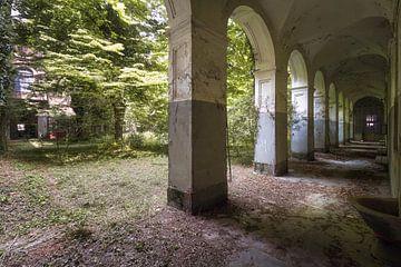 Couloir envahi. sur Roman Robroek
