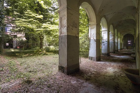 Overwoekerde Binnenplaats. van Roman Robroek