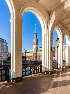 Alsterarkaden und das Rathaus im Hamburg von Werner Dieterich