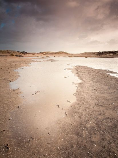 Waterrijke Duinlandschap van David Hanlon