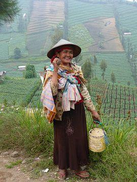 Javaanse vrouw op het land van Anita Tromp