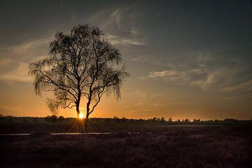 Zonsondergang op de heide van Gerard Bos