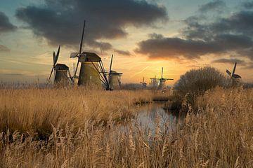 Mühlen in Kinderdijk Niederlande von Gert Hilbink
