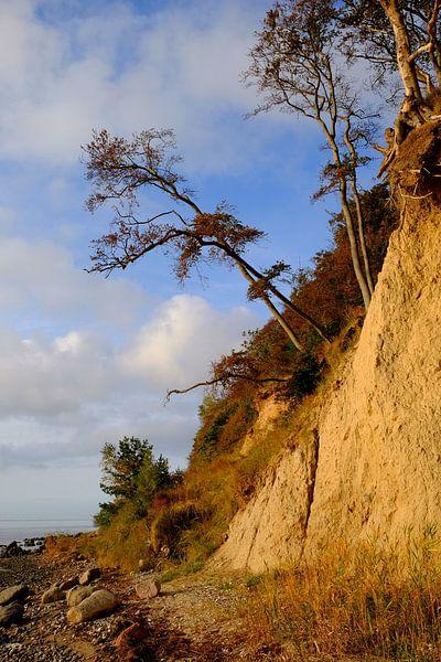 Lietzow von Ostsee Bilder