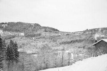 Winter in the Vosges von