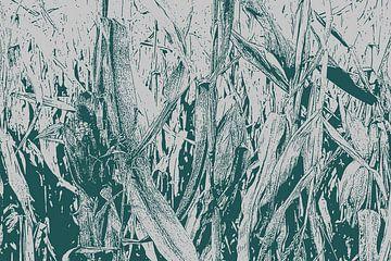 Maisveld van Christophe Fruyt