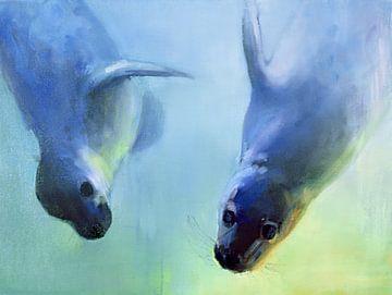 Schwimmende Robben von Mark Adlington