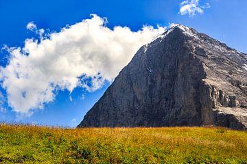 Eiger noordwand von Steven Van Aerschot