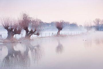Sneeuwlandschap in Amelisweerd sur Chris Heijmans
