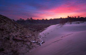 Zonsopkomst zandverstuiving Veluwe van Rick Kloekke