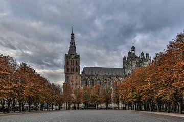 Sint-Janskathedraal en de Parade in 's-Hertogenbosch  van Fotografie Jeronimo