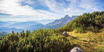 Berglandschaft in der späten Nachmittagssonne von Coen Weesjes