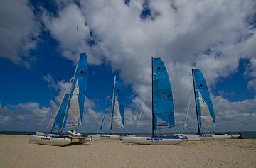 Catamarans op het strand van Wim van der Geest