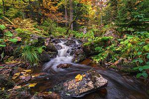 Autumn Harz Mountain