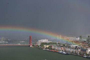 Rainbow sur Paul Optenkamp