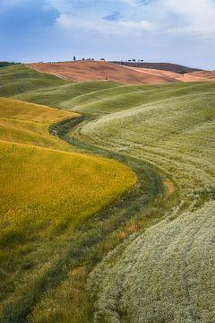 Toscaans Landschap van Roelof Nijholt