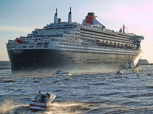 Das ganz große Schiff van Peter Morgenroth