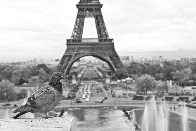 De Eiffeltoren van Jasper van de Gein Photography